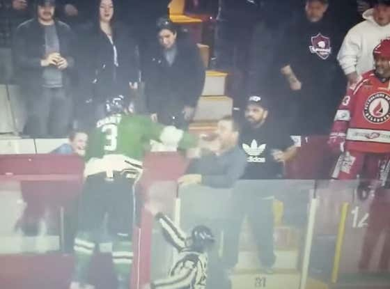 Olde Time Hockey: Former NHL Prospect Gets Suspended For Trying To Climb Over The Glass To Beat The Shit Out Of A Fan