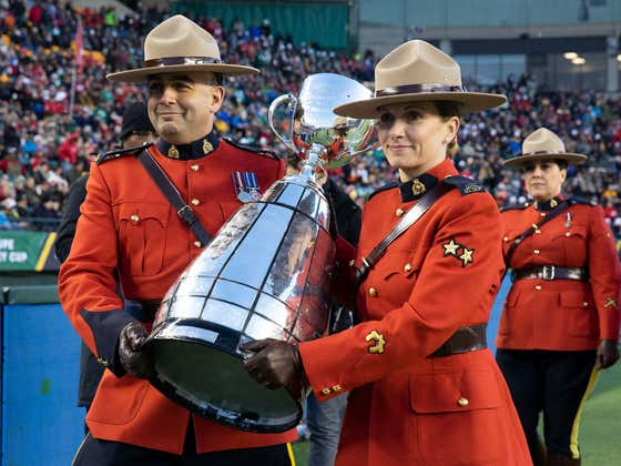 The Hamilton Tiger-Cats Will Play the Winnipeg Blue Bombers in the 107th Grey Cup