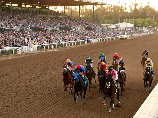 BlackJack's Gulfstream Park Pick Five and NFL Picks