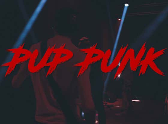 Full Concert Replay: Pup Punk LIVE at Mulcahy's
