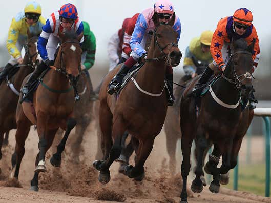 BlackJack and Lo Duca's Horse Racing Plays of the Day