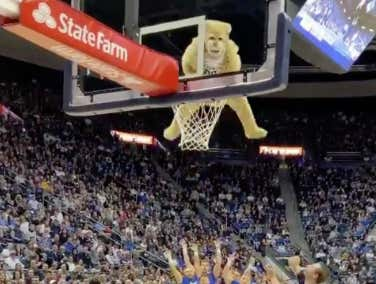 BYU's Mascot Is The Best Athlete In All Of Sports Right Now - This Dunk Continues To Prove It