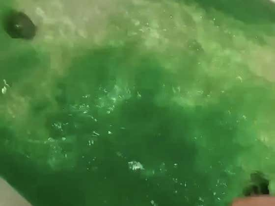 My Heart Is With This Guy Who Dyed His Bathtub Green