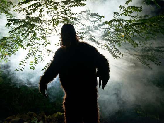 Quarantine Apparently Boon For Bigfoot, Moves to Oklahoma To Be Near Joe Exotic?