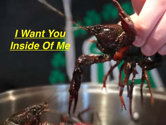 """I Want You Inside Of Me"" - Crawfish Boil"