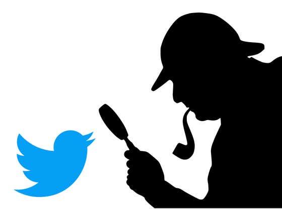 Twitter's Sharpest Detectives