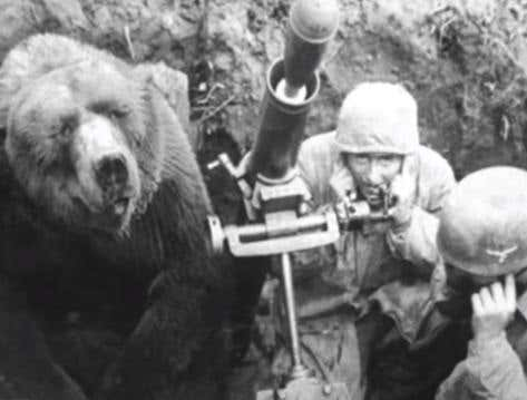 Wake Up With A Did You Know: Poland Had A Real Bear In Their Army During WWII And He Would Smoke Cigs And Gas Beers With The Boys