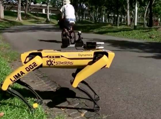 Robot Dogs Are Now Being Used In Singapore Parks To Remind People To Practice Social Distancing
