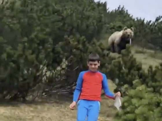 Cazzo Madre di Dio! A Large Bear Nearly Turns Italian Kid Into A Spicy Meataball!