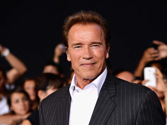 """Arnold Schwarzenegger Wrote What A Lot Of Us Feel. """"The America I Love Needs To Do Better."""""""