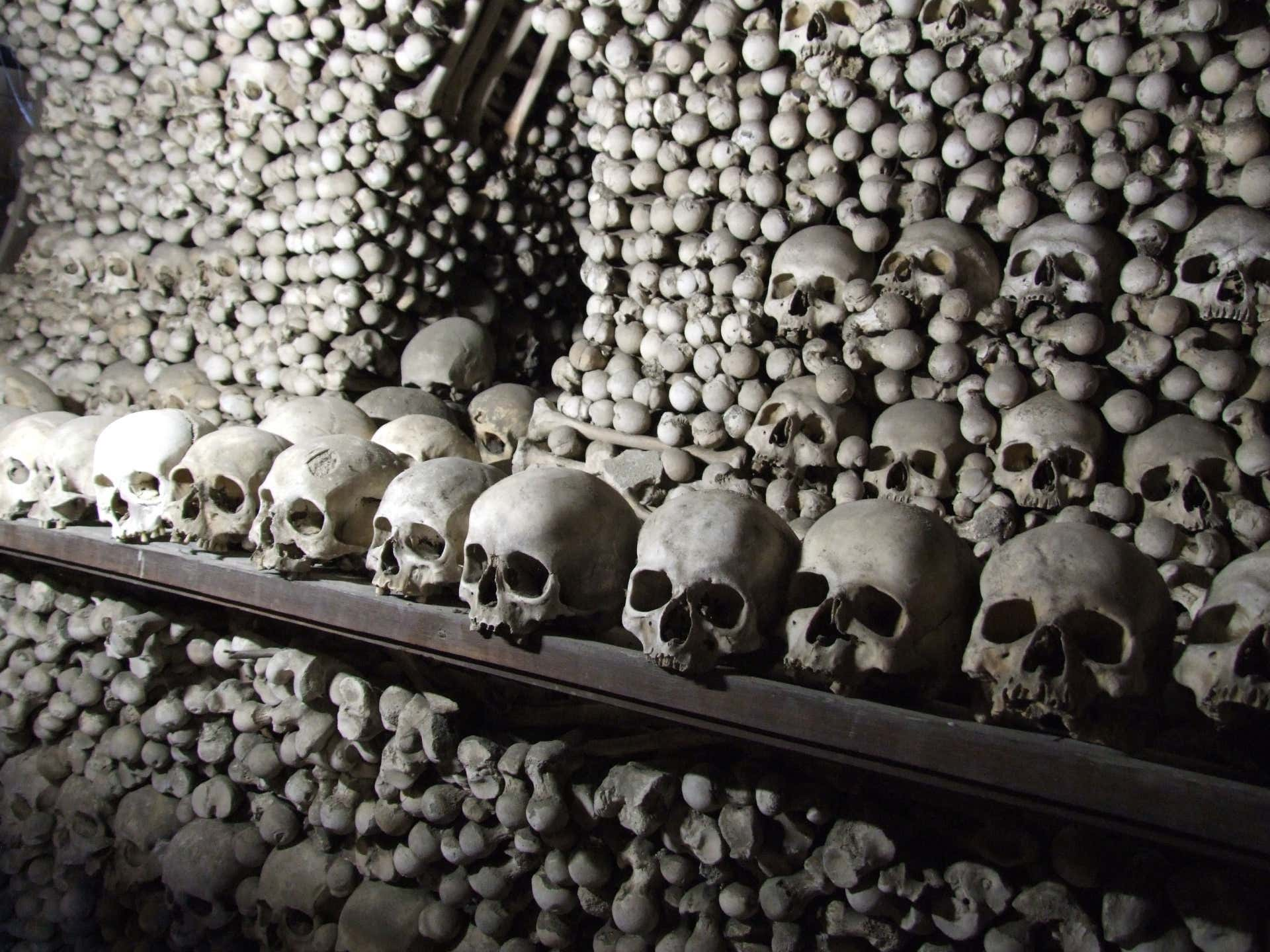 boy-skull.jpg
