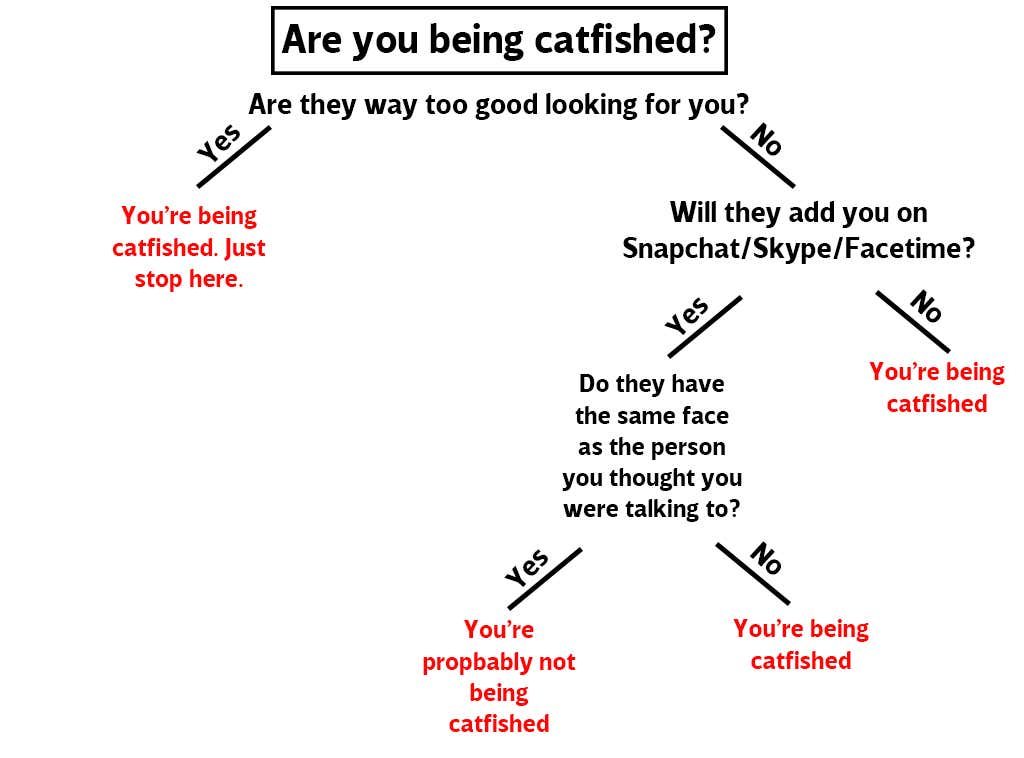 catfishchart.png