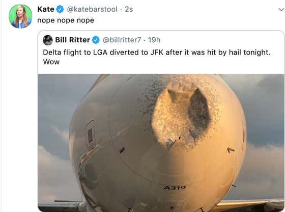 Bad Nose Job: Plane Makes Emergency Landing After Flying Through Hail Storm
