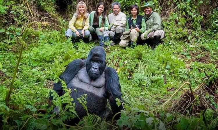 GorillaTrekking.jpg