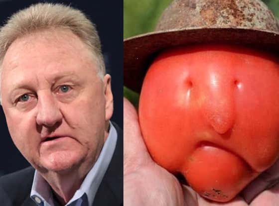 This Tomato That Looks Like Larry Bird is Proof Miracles Do Happen