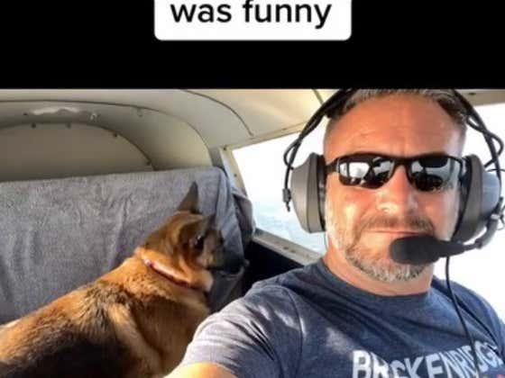 Dog Went Zero Gravity Mode