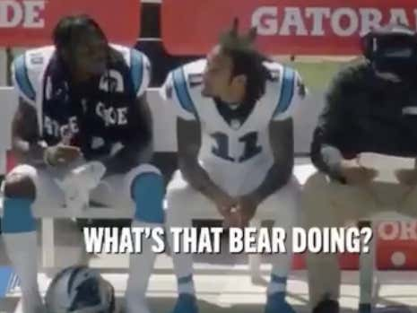 Robby Anderson Learning About The Panthers Mascot For The First Time Is A Wild Ride