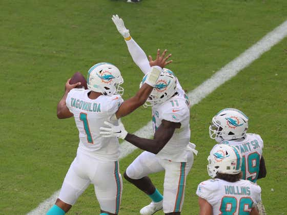 Here Come the Dolphins