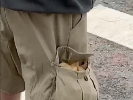 I Dare Anybody To Ever Shit On Cargo Shorts Again After This