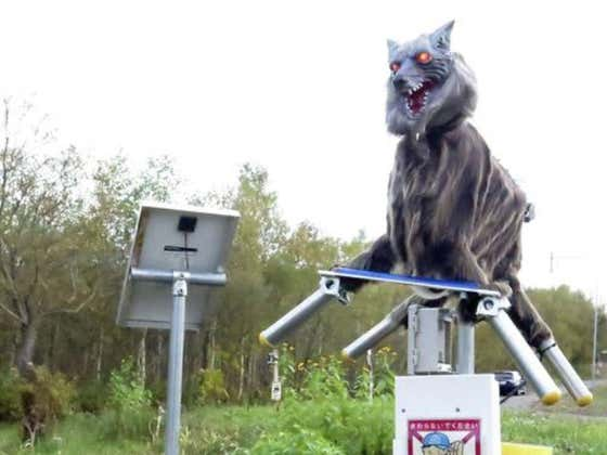 "What Could Possibly Go Wrong: Town Deploys Robot ""Monster"" Wolves To Defend Town From Bears"