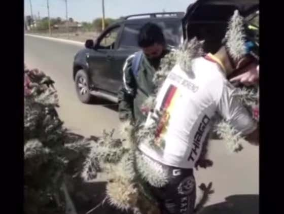 Cyclist Hits A Pothole Going Full Speed And Gets Absolutely BODIED By A Cactus