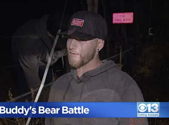 Get A Load Of This Guy With Giant Balls Who Punched A Bear In The Face To Rescue His Rescue Dog Named Buddy