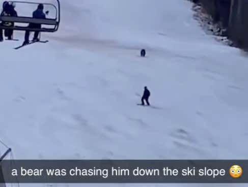 WILD Video Of Skier In Romania Getting Chased Down The Side Of A Mountain By A Full-Grown Bear