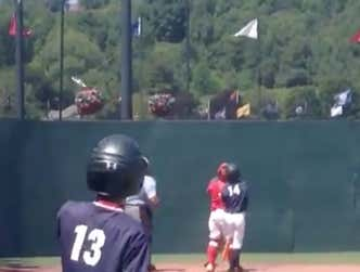 Some Poor Bird Got Absolutely Sniped Mid-Flight By A Foul Ball During A Baseball Game