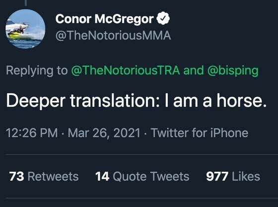 Conor McGregor Is A Horse