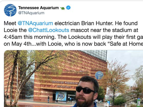 Some Are Calling This Chattanooga Electrician A Hero For Finding A Minor League Baseball Team's Stolen Mascot At 4:45am