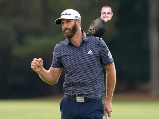 Dustin Johnson Called Me A Pigeon And People On The Internet Are Being Mean About It