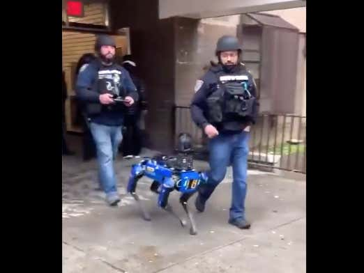 """It's Happening: The NYPD Is Allegedly Using """"Robot Dogs"""" To Help Catch Bad Guys"""
