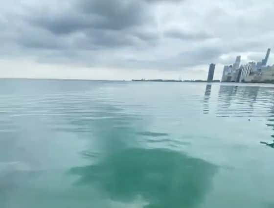 PLEASE STOP GHOST RIDING THE NEW ELECTRIC BIKES INTO LAKE MICHIGAN