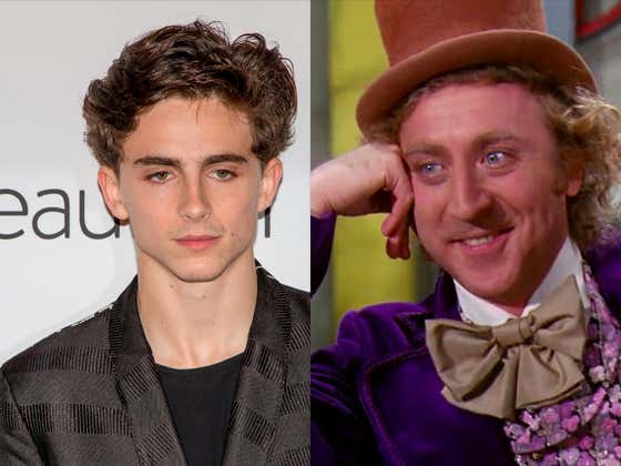 Handsome Man Timothee Chalamet Will Play Willy Wonka In A New Origin Movie