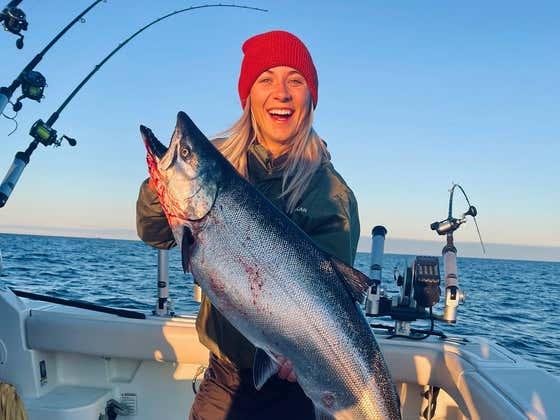 Fighting King Salmon on Lake Michigan