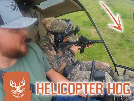 Hunting Feral Hogs from a Helicopter