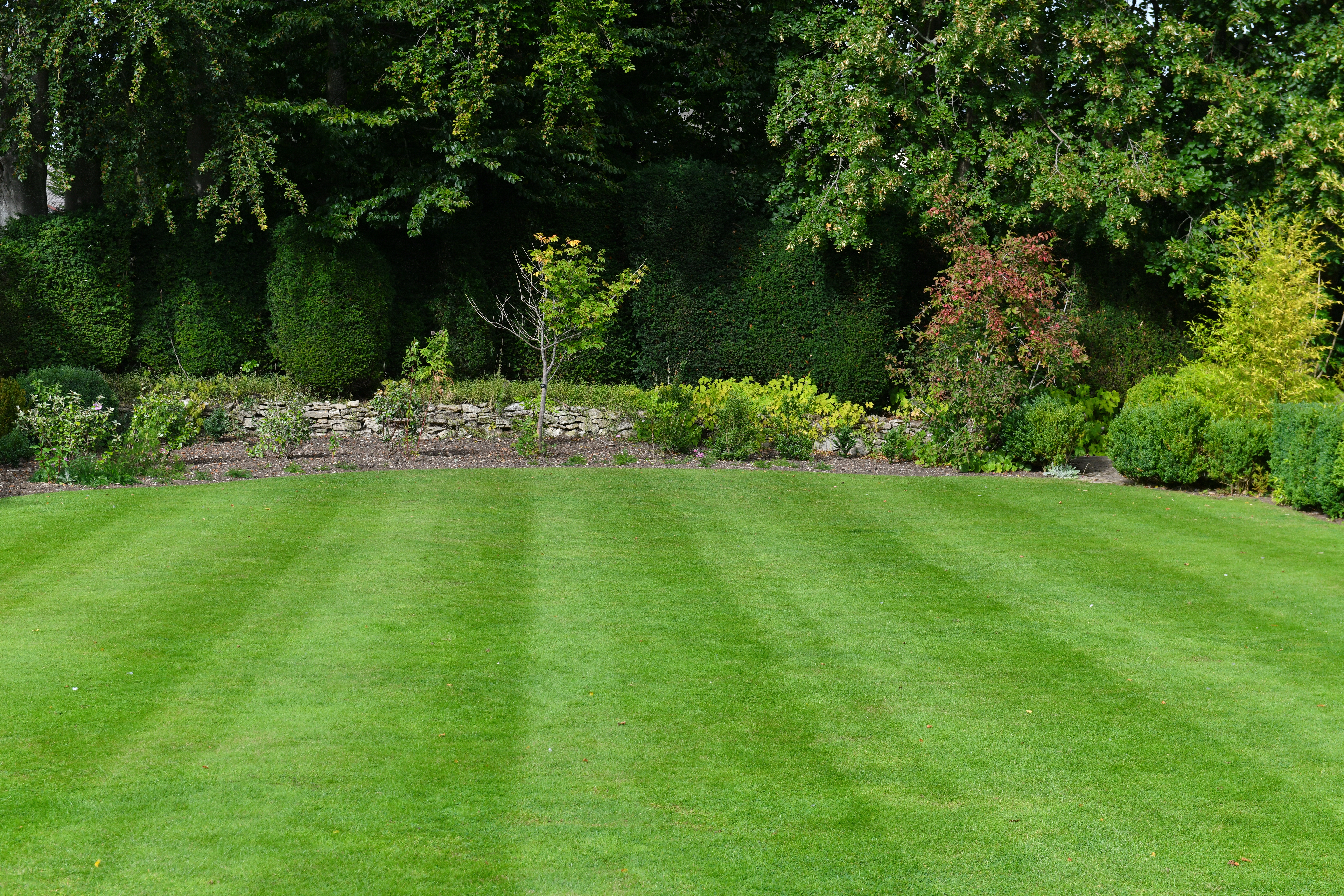 Sometimes I Wish I Had A Lawn To Mow