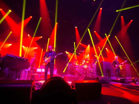 The Phish Are Back…Let's Rock N' Roll!