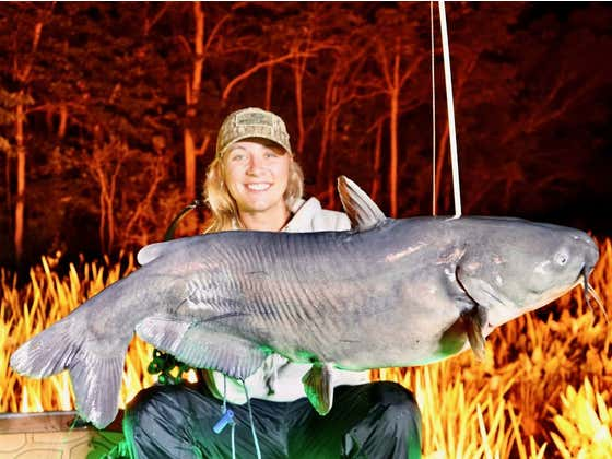 Chasing After Giant Blue Catfish in the Chesapeake Bay