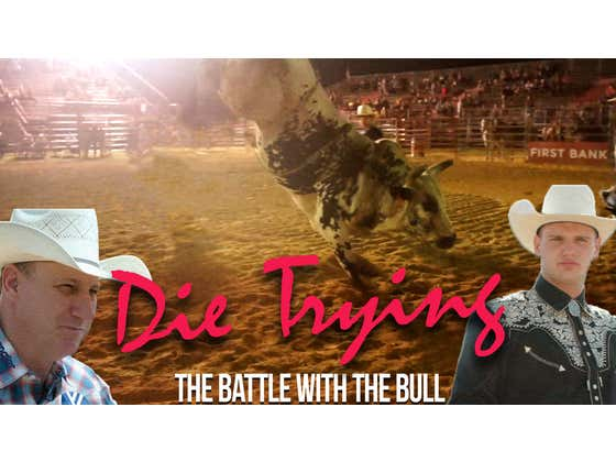 Die Trying: The Battle With the Bull