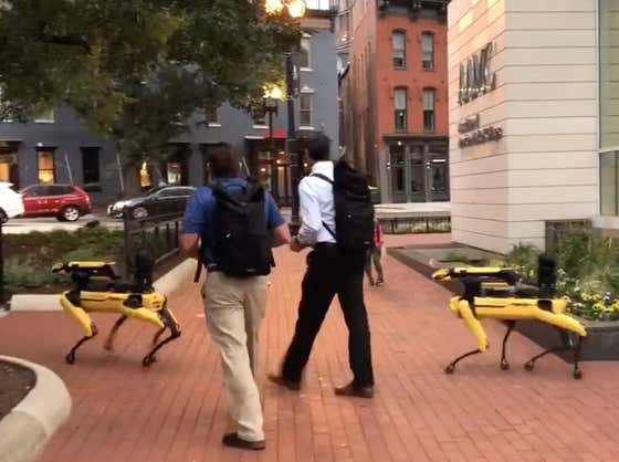 Nothing To See Here, Just The Boston Dynamics Robot Dogs Marching In Washington DC This Morning
