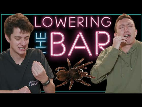 Barstool Eats Full Sized Dehydrated Tarantulas