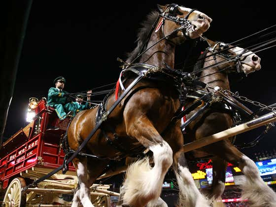 You Can Buy A Farm Complete With Budweiser Clydesdales (If You Have $75M To Spare)