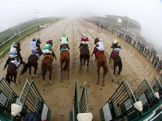 The Preakness Pick Is In