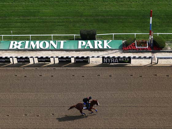 Let's Play The Early Pick Five at Belmont
