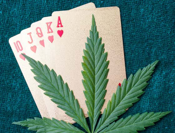 If Cuomo Wants To Legalize Weed, Why Not Just Tack Online Poker Onto That Too Please