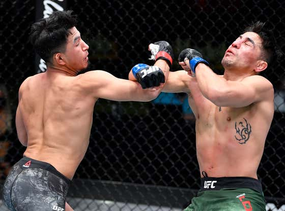 Here's All Of The Best Knockouts From Last Night's UFC Card