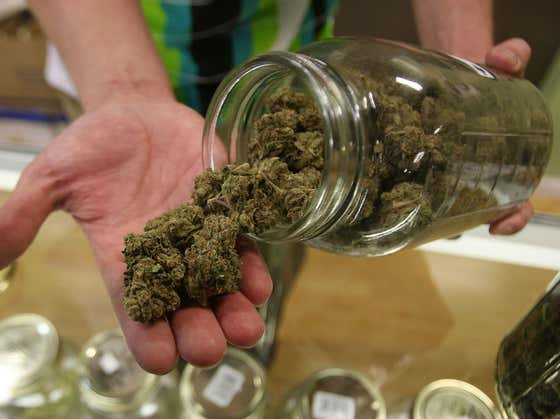 Stoners Rejoice: New York State Has Officially Legalized Weed