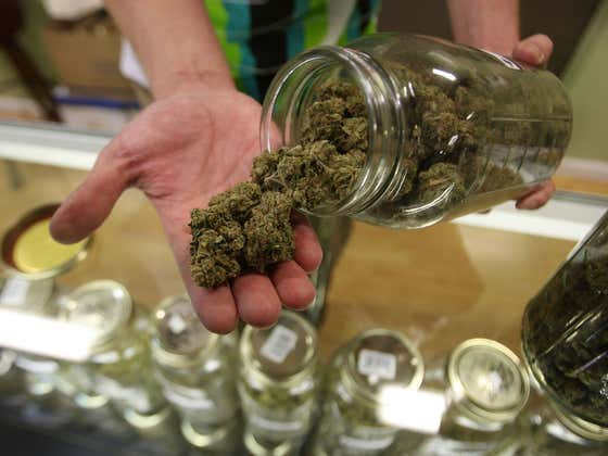 A University In Michigan Has Become The First To Offer A Cannabis Chemistry Scholarship