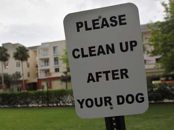 A Minnesota Town Is Encouraging Residents To Call 911 On People Who Don't Pick Up Their Dog Poop